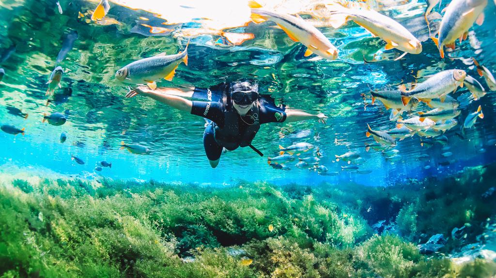 flutuação no Aquário Natural em Bonito